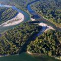 #drava #river #meander #aerial #pebble #forest #floodforest #drava #croatia #hungary