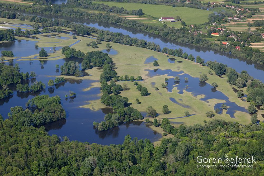 croatia, lonjsko polje, sava, zagreb, river, marsh,