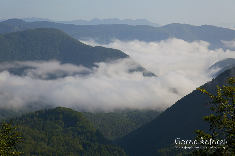 croatia, gorski kotar, mountains, forest, fog, mist