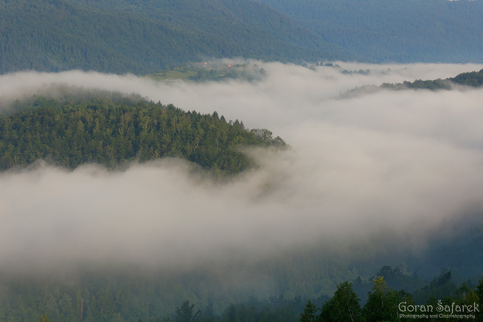 mountain, gorski kotar, croatia, fog, mist, forest, beech