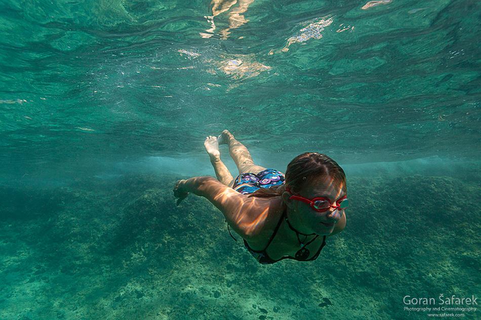 istra, kamenjak, coast, adriatic, sea, diving, snorkeling, underwater
