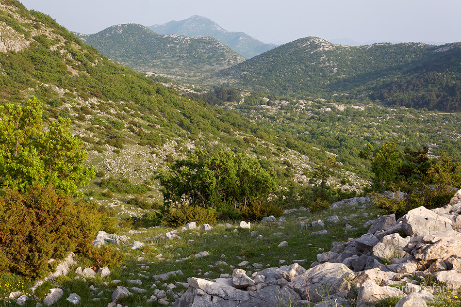 croatia, nature, nature park, national park, biokovo, adriatic, makarska