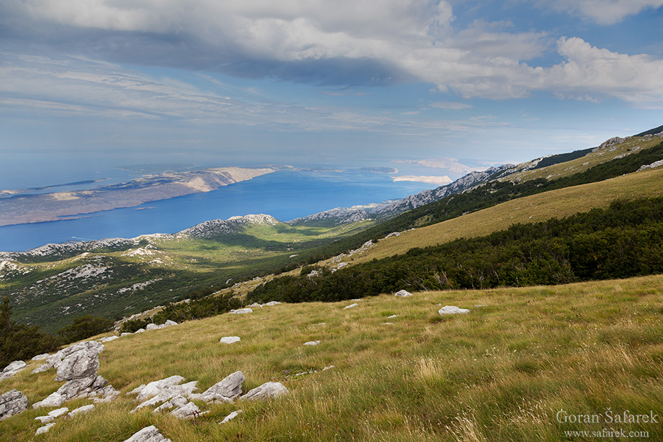 croatia, nature, nature park, national park, velebit, adriatic, lika, primorje,