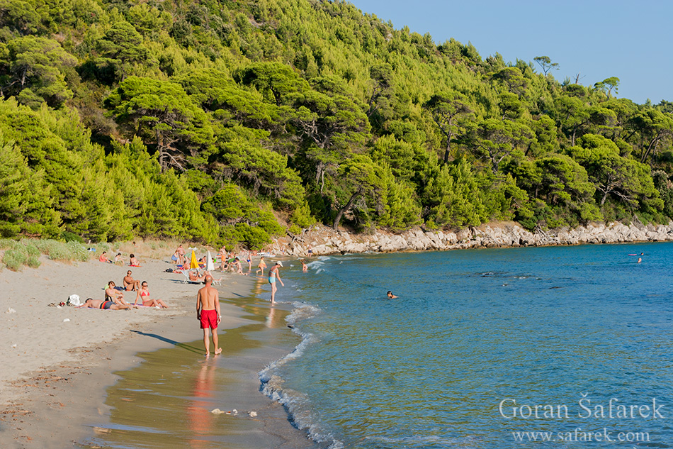 mljet, adriatic, sea, island, croatia, national park, coast, sandy, beach