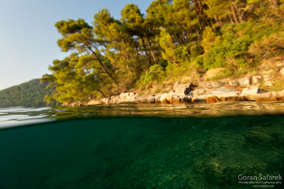mljet, adriatic, sea, island, croatia, national park, coast, saline, lake