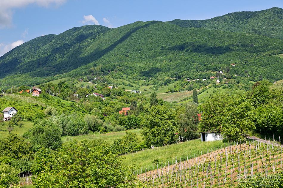 croatia, nature, nature park, national park, samoborsko gorje, žumberak
