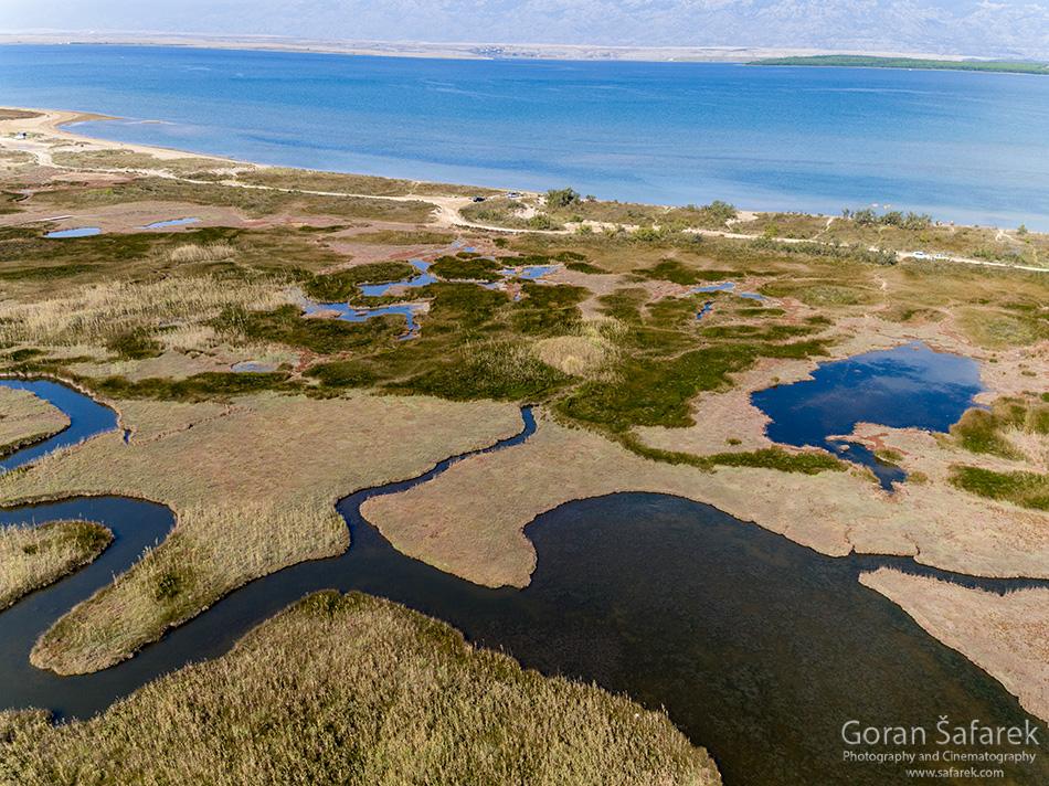 nin, croatia, lagoon, royal, dalmatia, adriatic, coast,sea,sandy, beach, lagoon, wetland, masrh, salty