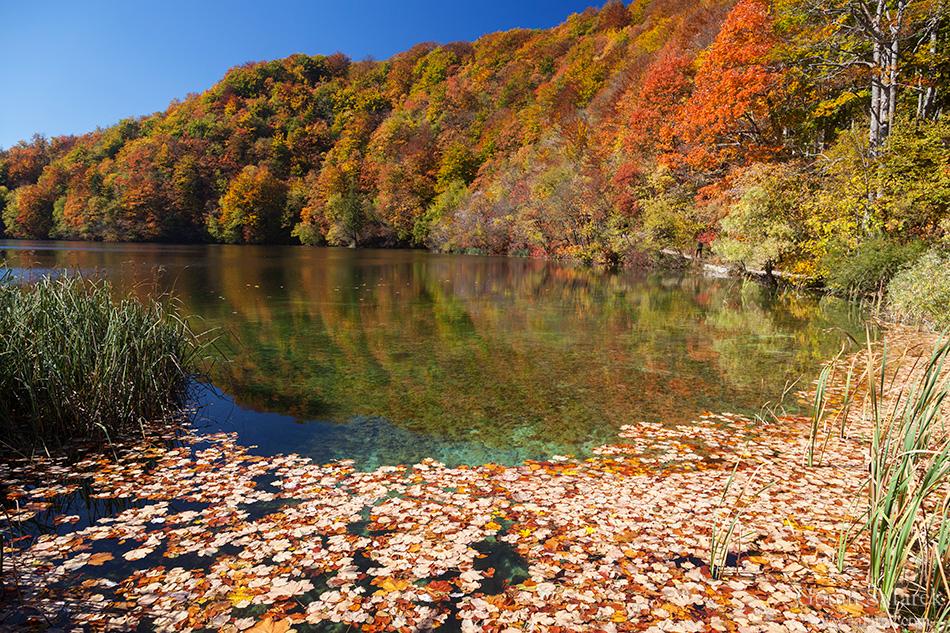 Galovac, Plitvice lakes, plitvička jezera, national park, croatia,