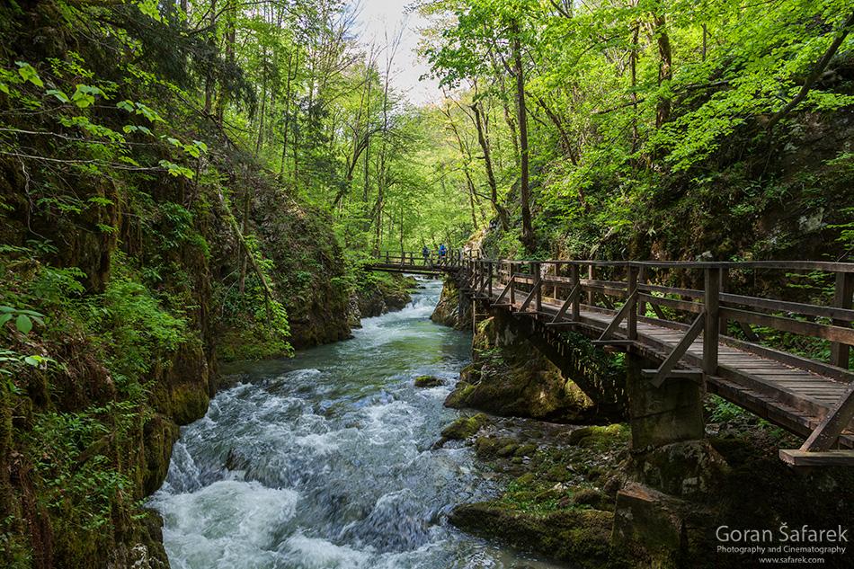 forest, mountain, kamačnik, canoyn,river,gorski kotar,vrbovsko, croatia, rapids,waterfalls, bridge