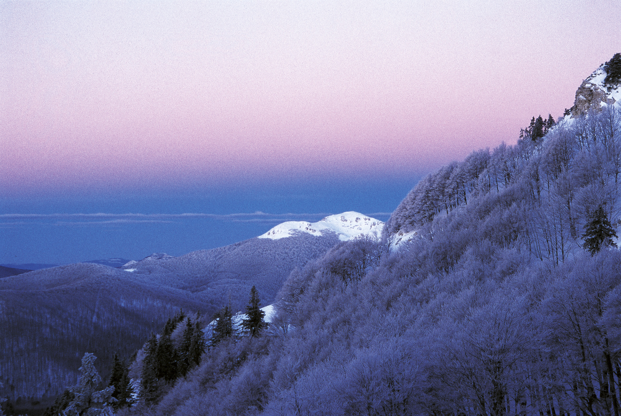 croatia, risnjak, national park, winter