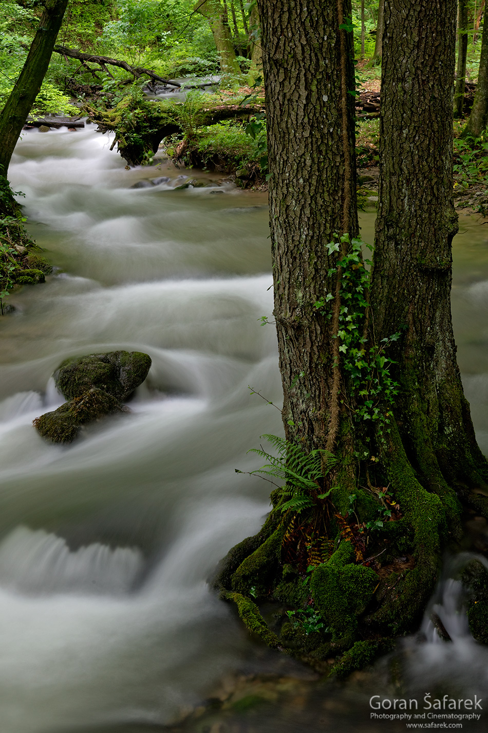 papuk, croatia, stream, mountain, nature park, slavonia, rapids