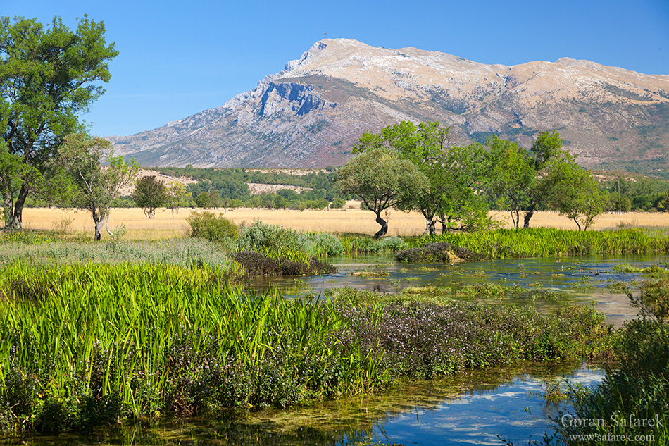 The Cetina River, dalmatia, rivers, water, dinara, plain, valley