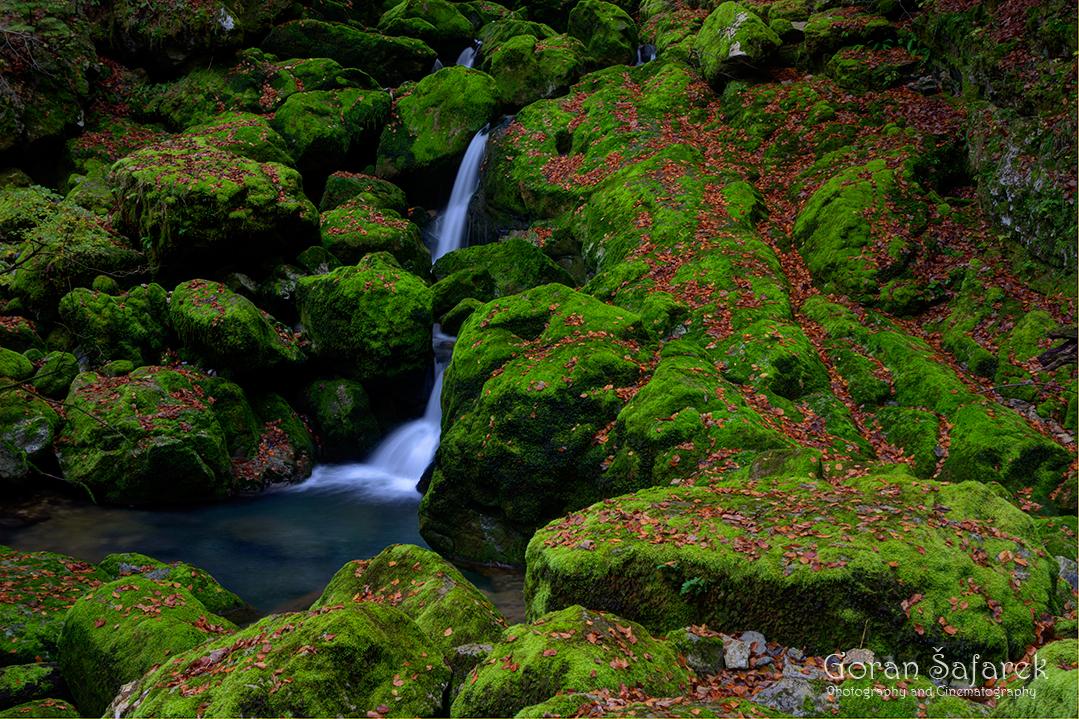 Zeleni vir, Devil's Passage, gorski kotar, torrent, river, forest, canyon, gorge