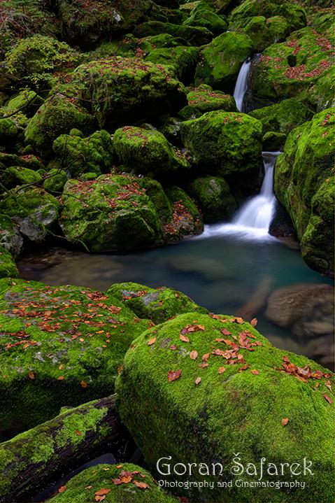 Zeleni vir, Devil's Passage, gorski kotar, torrent, river, forest, canyon, gorge, waterfall