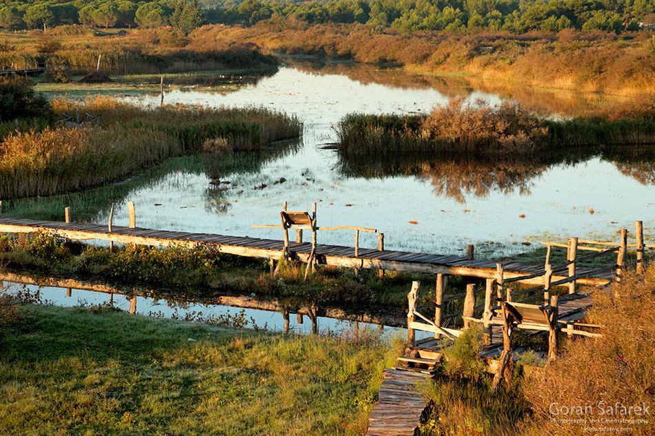 croatia, vrana lake, dalmatia,nature park, walking path
